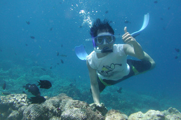 Lloguer d'apartaments a l'Estartit i la pràctica del snorkelling